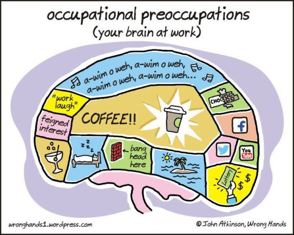 Occupational Preoccupations